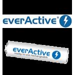 EverActive (AAA) (7)